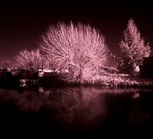 Loughborough Canal IR by Yhun Suarez