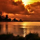 Golden Sunset - Belmont South NSW Australia by Phil Woodman