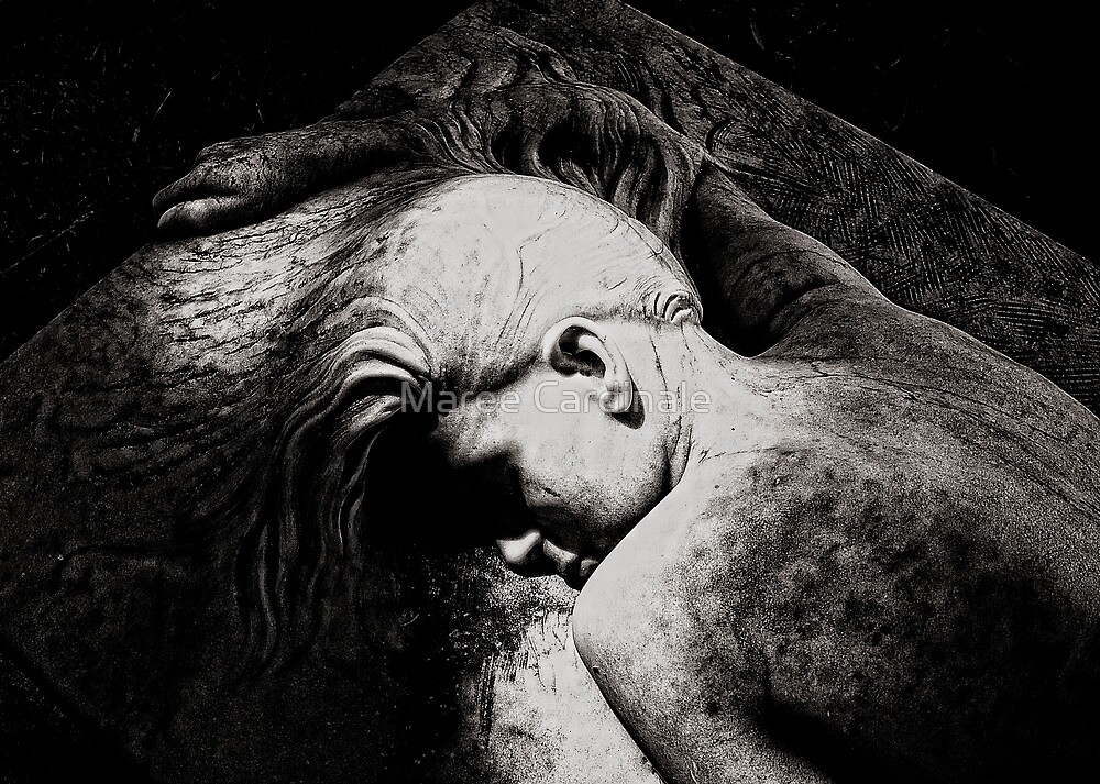 Sleep my love, sleep. by Maree Cardinale