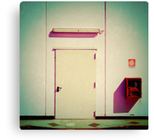 Freaky supermarket backdoor Canvas Print