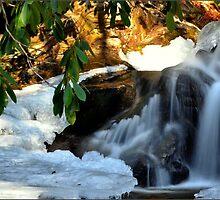 Winter's Rush by TraceyTilsonArt