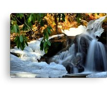 Winter's Rush Canvas Print