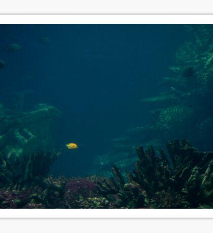 A Spot in the Ocean Sticker
