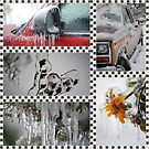 Ice Storm Collage by Jonice