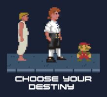 Choose your destiny by severodan