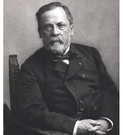 Portrait of Louis Pasteur by Nadar (Date: pre-1885) Sticker