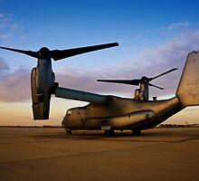 Osprey Sunrise Series 2 of 3. by RickyBarnard