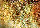 Autumn dreams by Anne Staub