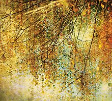 Autumn dreams by Anne Staub