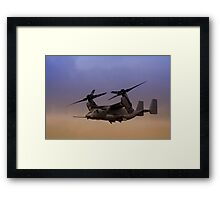 Osprey In Flight Series 1 of 4 Framed Print