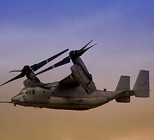 Osprey In Flight Series 2 of 4. by RickyBarnard