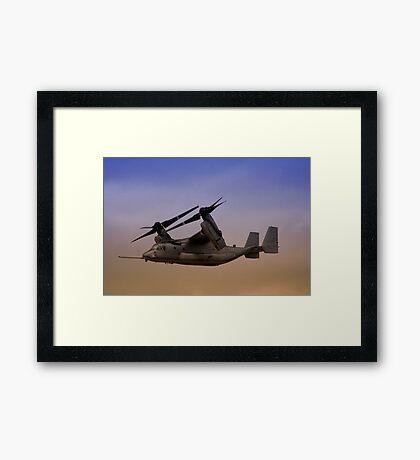 Osprey In Flight Series 2 of 4. Framed Print