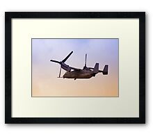 Osprey In Flight Series 4 of 4. Framed Print