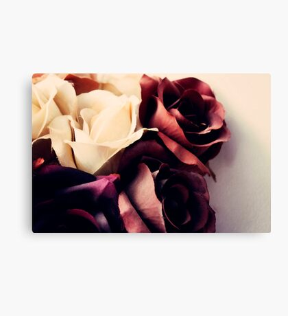 Russet Roses  Canvas Print