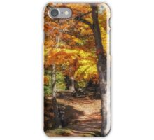 Fabulous fall iPhone Case/Skin