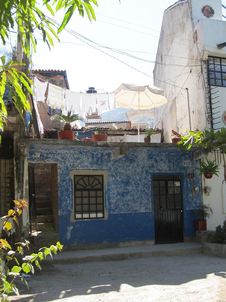 House at the River Cuale - Casa cerca del Rio Cuale by PtoVallartaMex