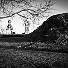 Dundonald Moat by Chris Cardwell