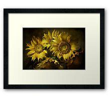 Suns Framed Print