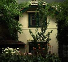 The Widow's Cottage by RC deWinter