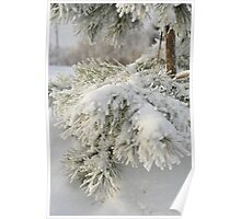 Thick Winter Coat Poster
