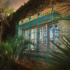 Barred Windows At Historic Atalaya Castle by Kathy Baccari
