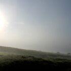 Foggy Sheep by Mark Smitham