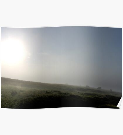 Foggy Sheep Poster