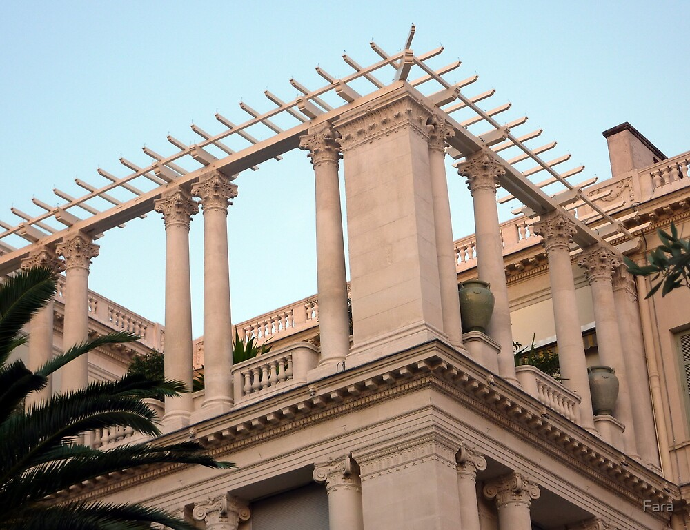 Ionic And Corinthian Columns by Fara