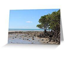 Ocean mangrove Greeting Card
