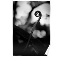 Emergence - Leaf Curl Grayscale Poster
