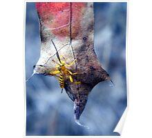 Yellow Wasp 2 Poster