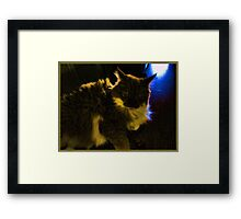 Have They Left Yet? Framed Print