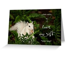 Squirrel appreciation Greeting Card