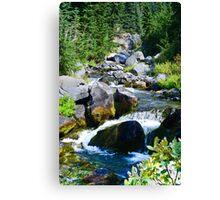Mount Rainier - Skyline Trail - Paradise River Waterfall Canvas Print