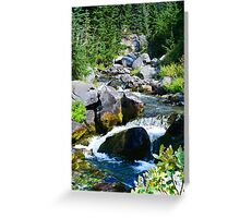 Mount Rainier - Skyline Trail - Paradise River Waterfall Greeting Card