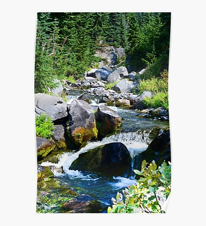 Mount Rainier - Skyline Trail - Paradise River Waterfall Poster