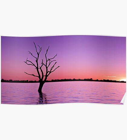 Sunset at Lake Bonney Poster