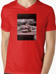 Here's Lookin At You Kid! Mens V-Neck T-Shirt