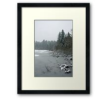 Yellow Lake Freeze Framed Print