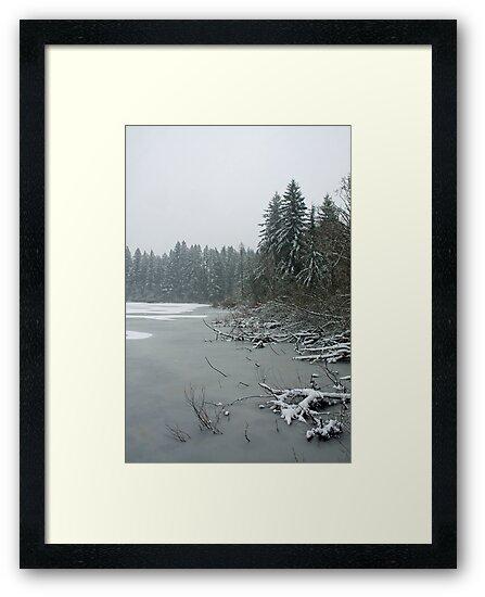 Yellow Lake Freeze by Dale Lockwood