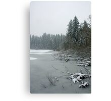Yellow Lake Freeze Canvas Print
