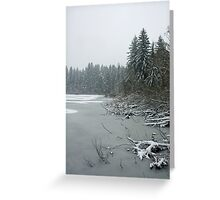 Yellow Lake Freeze Greeting Card
