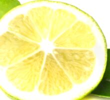 fresh juicy lime, lemon with leaves Sticker
