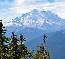 Mount Rainier - Paradise - National Park by The Accidental Farmers