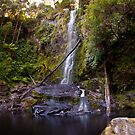 Erskine for a Falls by Puggs