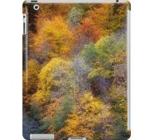 Autumn appearance iPad Case/Skin