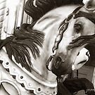 Carousel 61 by Joanne Mariol