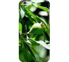 Pear on willow iPhone Case/Skin