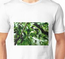 Pear on willow Unisex T-Shirt