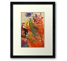 Splash of colours Framed Print